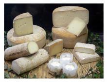 fromage-brebis-location-de-vacances.jpg