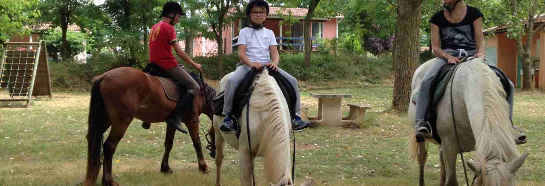 chevaux-gites-location.jpg