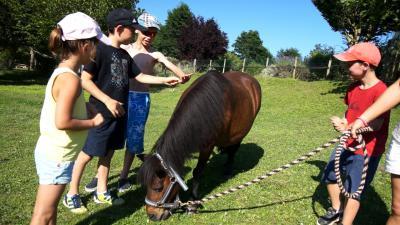 cheval-village-vacances.jpg