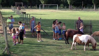 animaux-village-de-gites.JPG