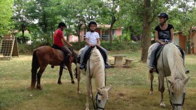 chevaux-gites-location