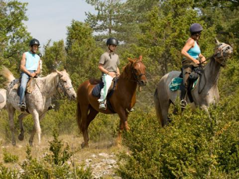 balades-poneys-rougier-vacances.jpg